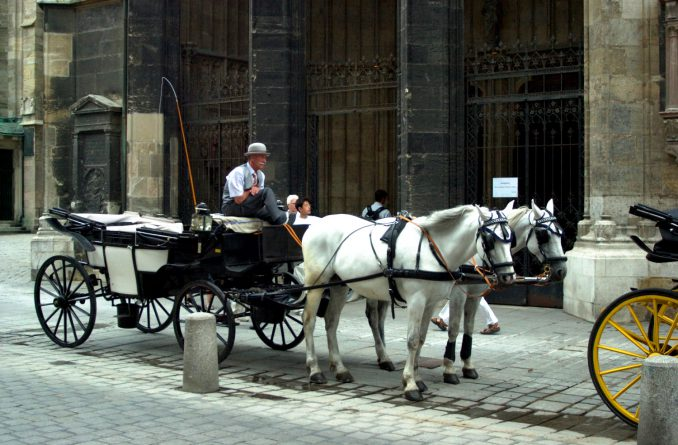 Rundt om i Wien finnes det mange hestedrosjer som egner seg for sightseeing. Foto: Pål Stagnes